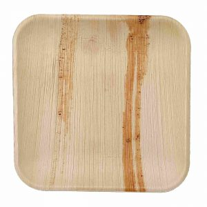 Dtocs Square Palm Leaf Plates