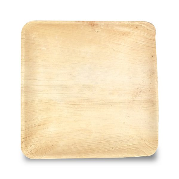 Dtocs Palm Leaf Plate - 10 Inch Square