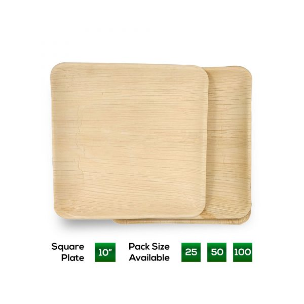 Dtocs 10 inch Square Plate