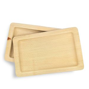Dtocs Rectangular Disposable Plates